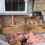 Water Damage Restoration Minnesota by Kellington Remodeling and Restoration Hastings mn